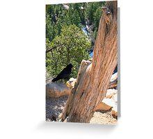 Petrified Raven Greeting Card