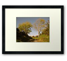 Rural Irish country path Framed Print