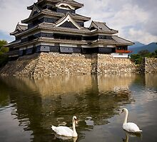 matsumoto castle by Ryan Young