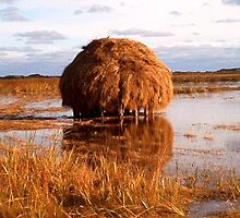 A Plum Haystack - Plum Island, MA by watercolors1
