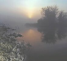 Frosty Morning on Lake by John Walsh, IRELAND