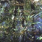 Endangered Wetland by smithrankenART