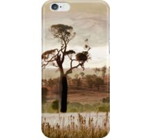 Gondwana Boab iPhone Case/Skin