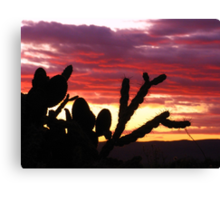 Desert Silhouettes #2 Canvas Print
