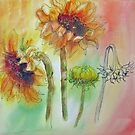 Transitions - Sunflowers by bevmorgan
