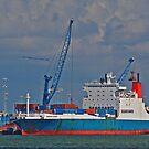 Cargo Ship at Miami by longaray2