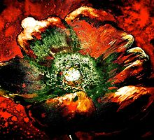 Abstract...Poppy by ©Janis Zroback