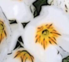 White Primrose Patch Sticker