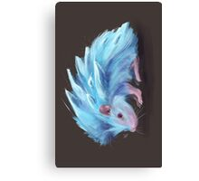 Ice Hedgehog Canvas Print