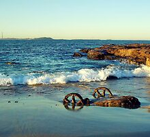 Waterscape: Windang Island Bogey wheels II by Vanessa Pike-Russell