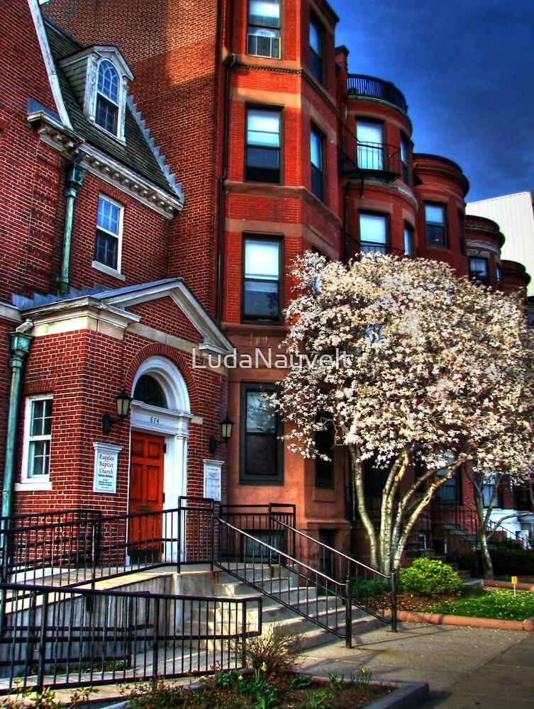 Streets of Boston by LudaNayvelt