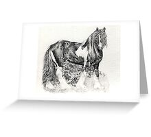 Gypsy Cob Horse Portrait Greeting Card