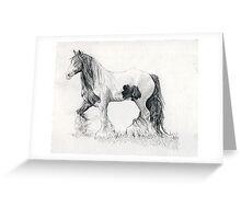 Gypsy Cob Horse Portrait Greeting Card