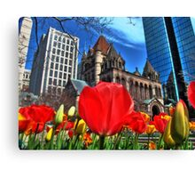 Boston in Bloom Canvas Print