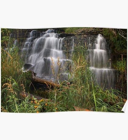 Wild Waterfall Poster