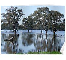 Longford Wetlands Poster