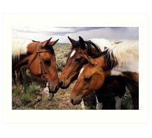 Conversation Paint Horse Portrait Art Print
