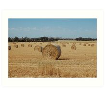 acres of hay  Art Print