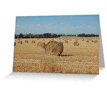 acres of hay  Greeting Card
