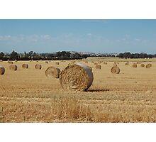 acres of hay  Photographic Print
