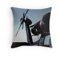 Blackhawk Dawn Throw Pillow