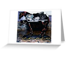 Mustang Sally Greeting Card
