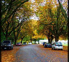 Autumn Road by Mari  Wirta