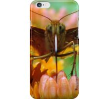 Great Spangled Fritillary Pair iPhone Case/Skin