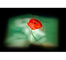 We Will Remember Them Photographic Print
