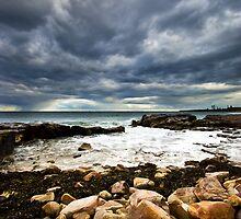Seaweed & Rocks by Raquel O'Neill