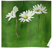 Daisy, Daisy, Daisy Poster