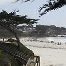 Monterey Beach 1 by Tomoe Nakamura