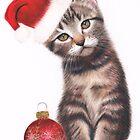 Santa Claws by Karen  Hull