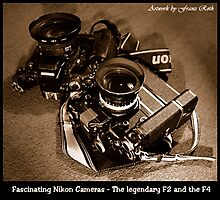 Fascinating Nikon Cameras - Sepia Version Photographic Print