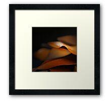 orange simphony Framed Print