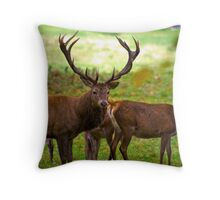 Stag & Does   (Red Deer) Throw Pillow