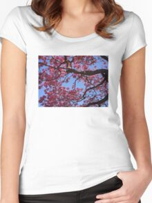 Pink Blossoms, Tabebuia Tree Women's Fitted Scoop T-Shirt