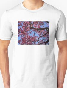 Pink Blossoms, Tabebuia Tree T-Shirt