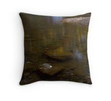 Fall Creek Gorge - Waterfall Throw Pillow