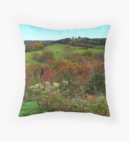 Overlooking Autumn Throw Pillow
