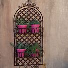 Shabby Chic by Martie Venter