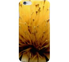 CIRSIUM rose flower iPhone Case/Skin