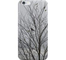 Bird on a tree iPhone Case/Skin