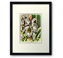 White Wonder Framed Print