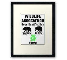 Wildlife Association Bear Identification Framed Print