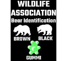 Wildlife Association Bear Identification Photographic Print