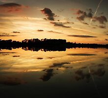 Swithland Sunset by Darius Kay