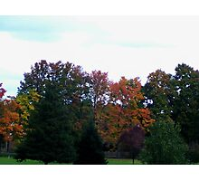Fall Foliage Michigan Photographic Print