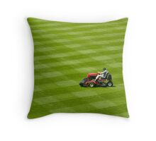 Grass...grass....more grass! Throw Pillow