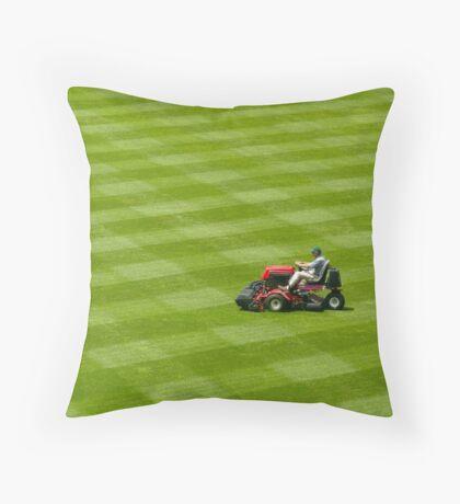 Grass...grass....more grass! Throw Pillow